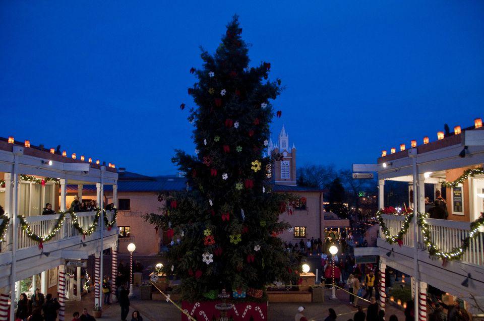 Christmas Tree in Albuquerque, NM