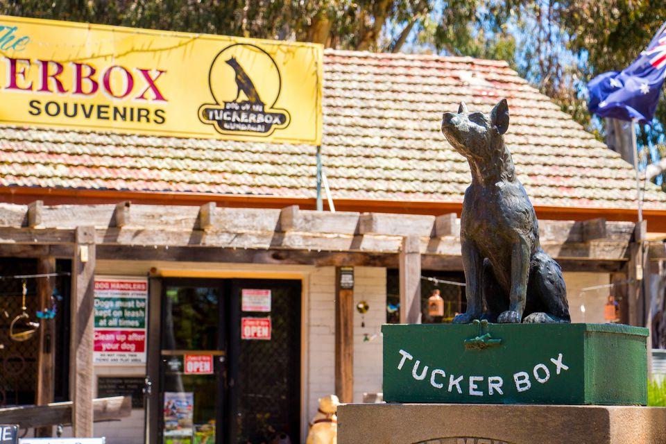 Dog on the Tuckerbox