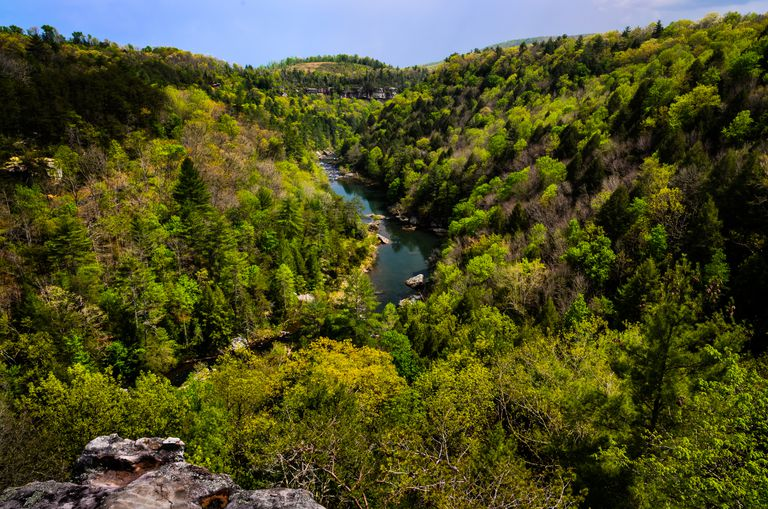 The Obed River drains part of the Appalachian Plateau in Tennessee