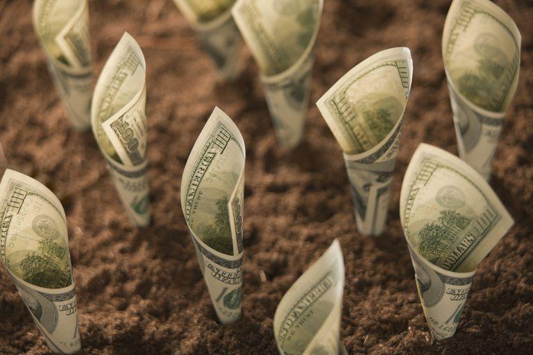 money in earth