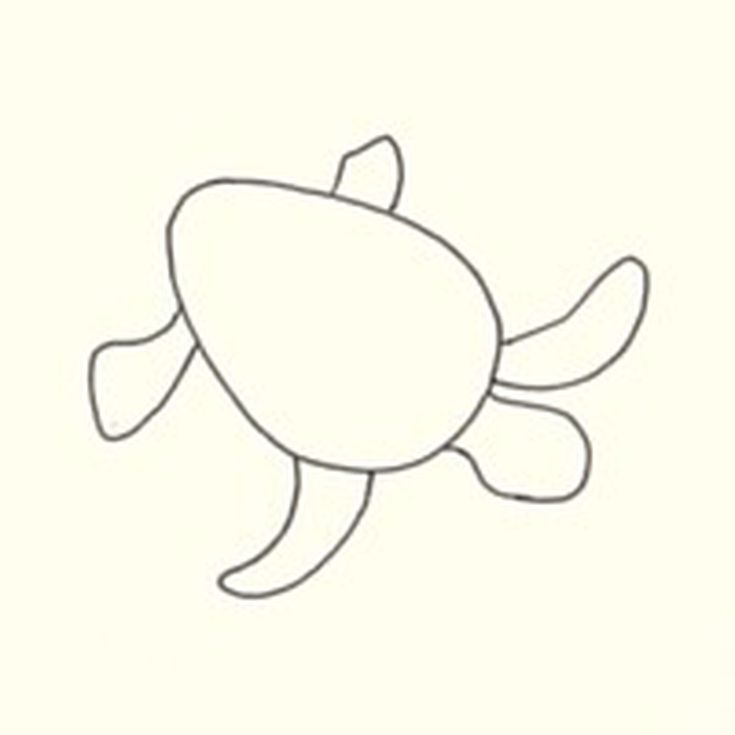 How To Draw A Sea Turtle Step By Instructions