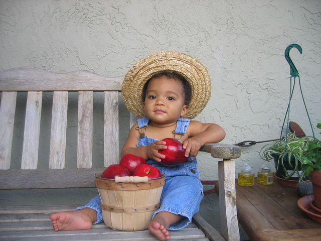 boy in overalls and straw hat with a bucket of apples