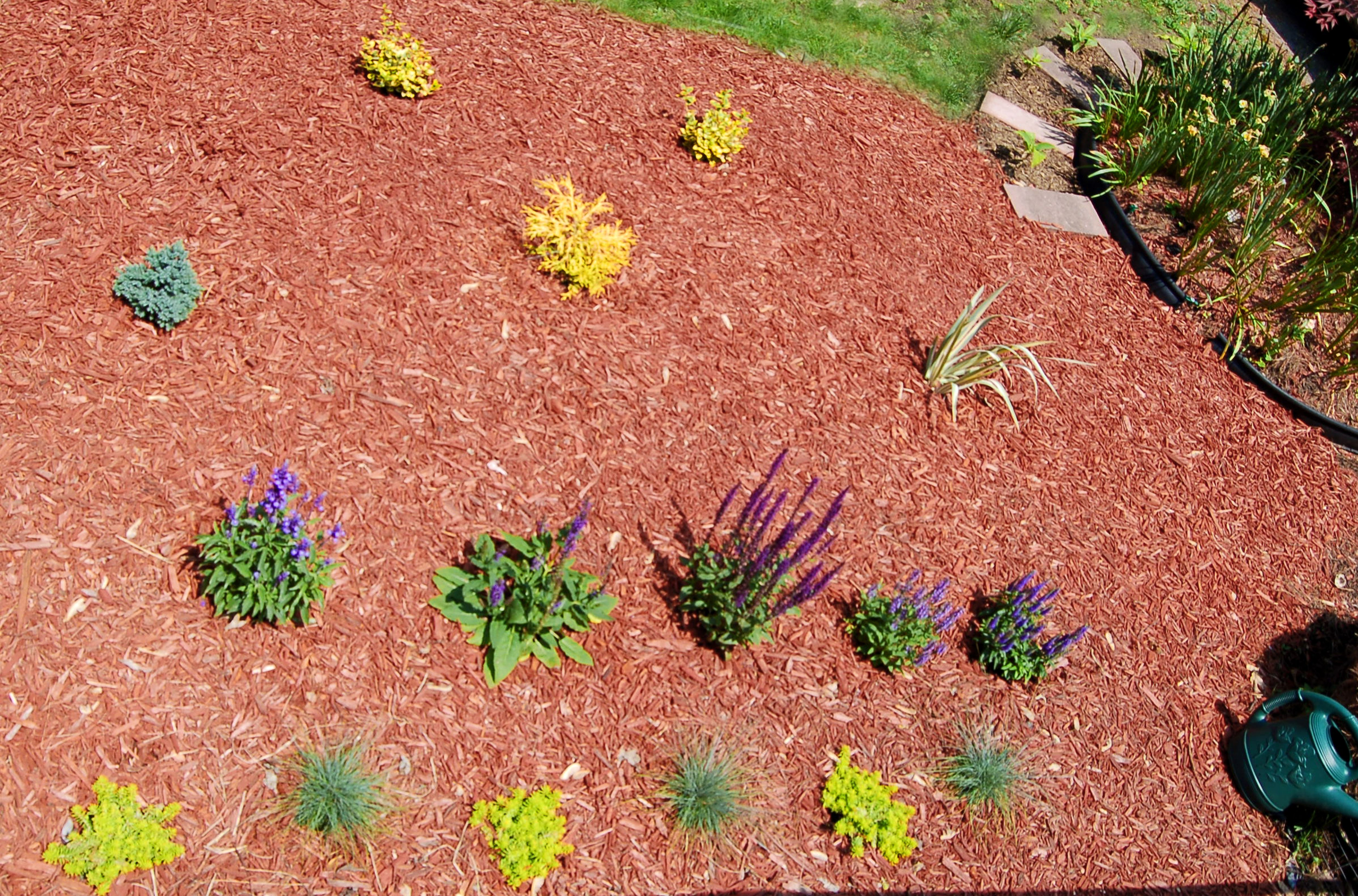 Case Study Planting Flower Beds