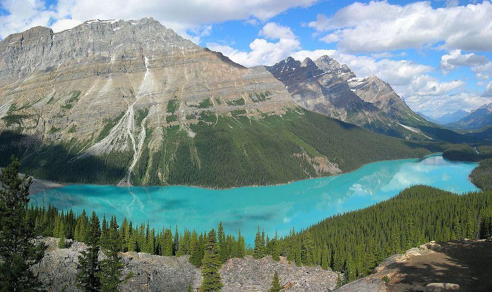 Alberta Peyto Lake