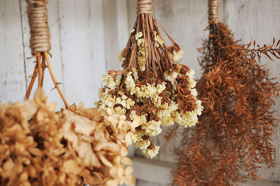 Dry flower hanging on the wall
