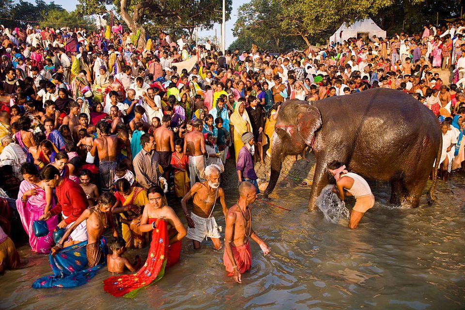 Sonepur Fair.