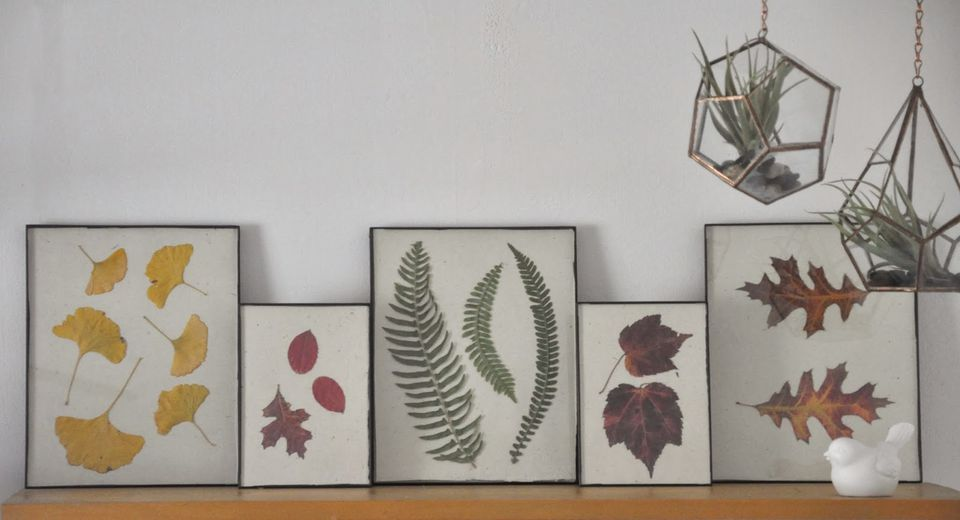 How to use fall leaves for a pressed art project