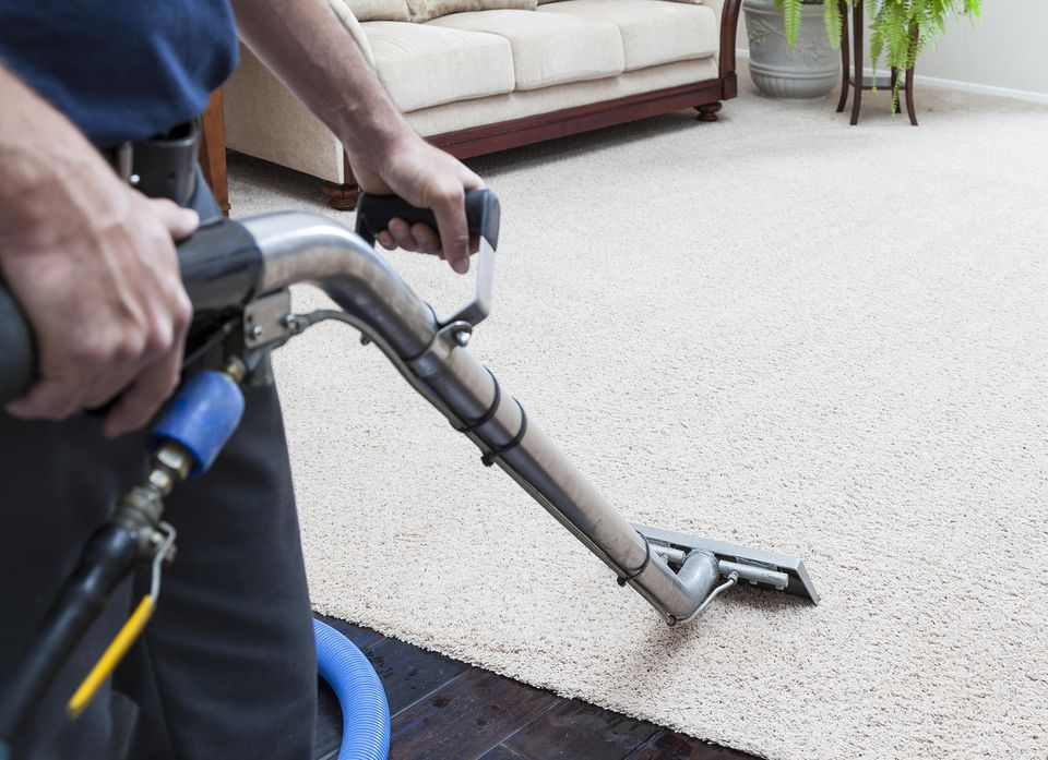 Professional carpet steam cleaner