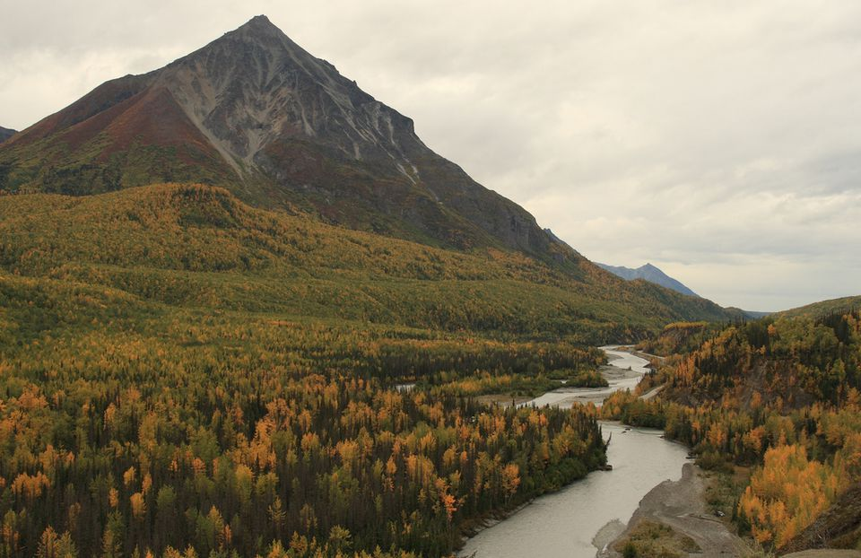 Fall In Denali National Park In Alaska