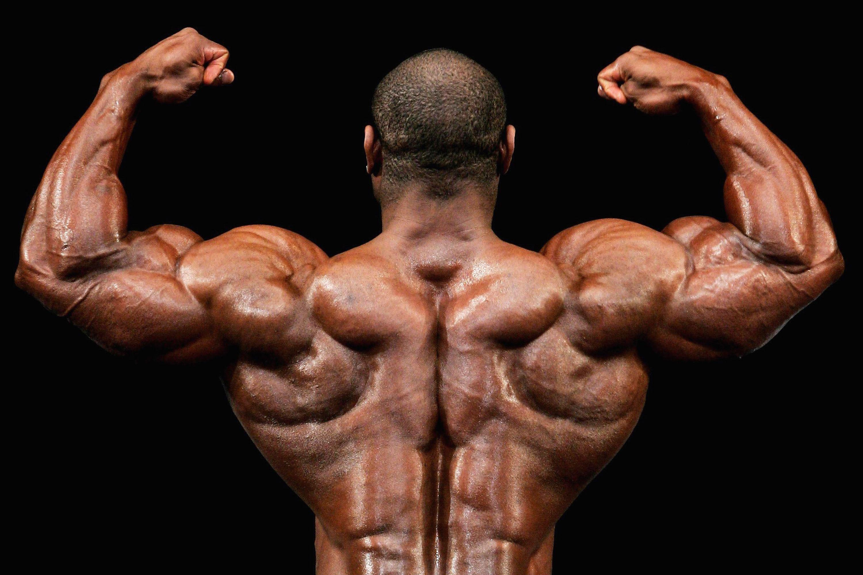 Bodybuilding Nutrition - Sample Bodybuilder's Diet