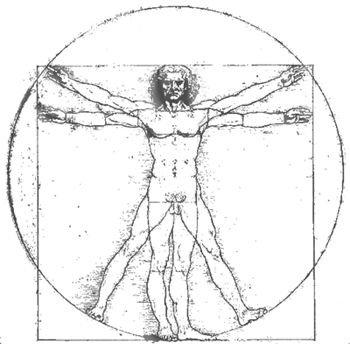 Vitruvian Man Image by Leonardo DaVinci in Anatomical Position