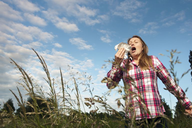 Woman sneezing in tall grass