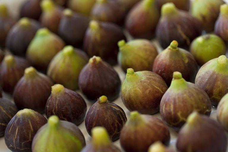 Bunch of fresh figs