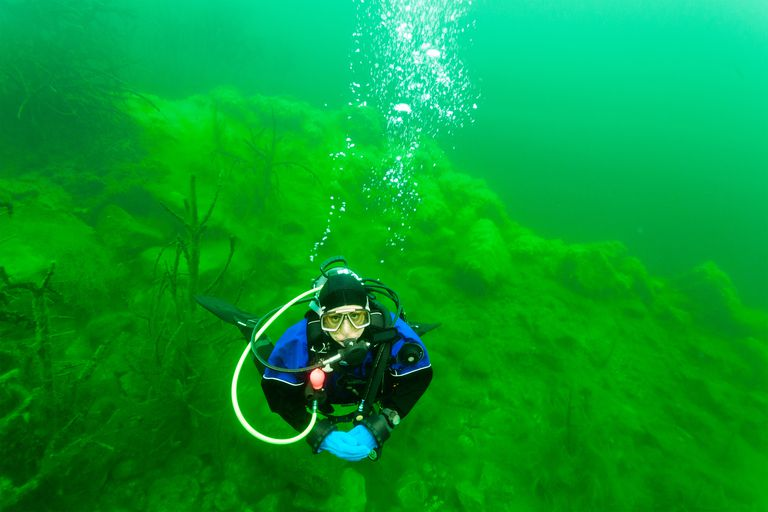 diving in the green lake