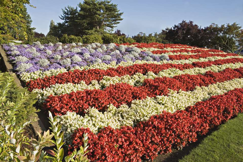 American flag made of flowers