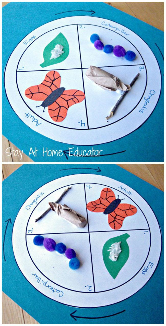 13 fun paper crafts that are also educational