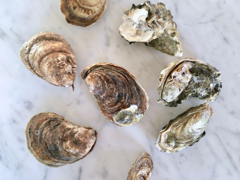Oysters to Shuck