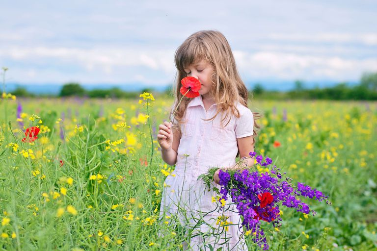 I got Flower Essence Novice. What is Your Flower Essence IQ?