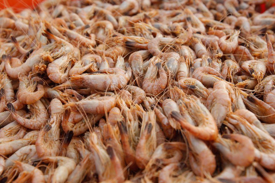 Fresh Louisiana Shrimp