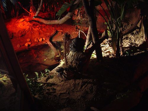 Haunted Reptile House at Detroit Zoo Boo