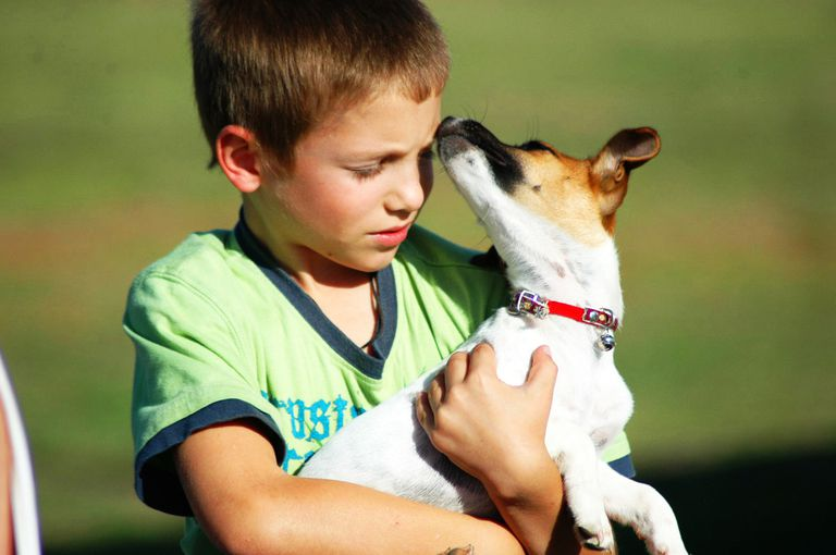 Any volunteer opportunity will teach your tween about empathy and giving back.