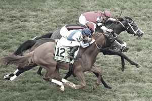 Horses racing at the Preakness