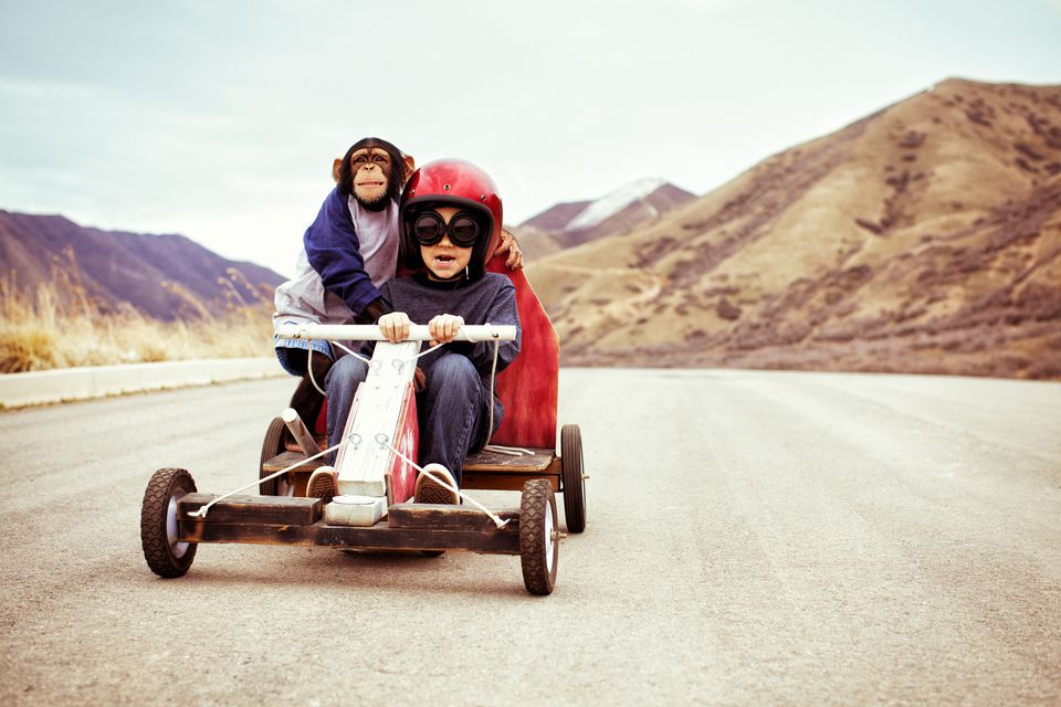 Chimpanzee and child in go-kart