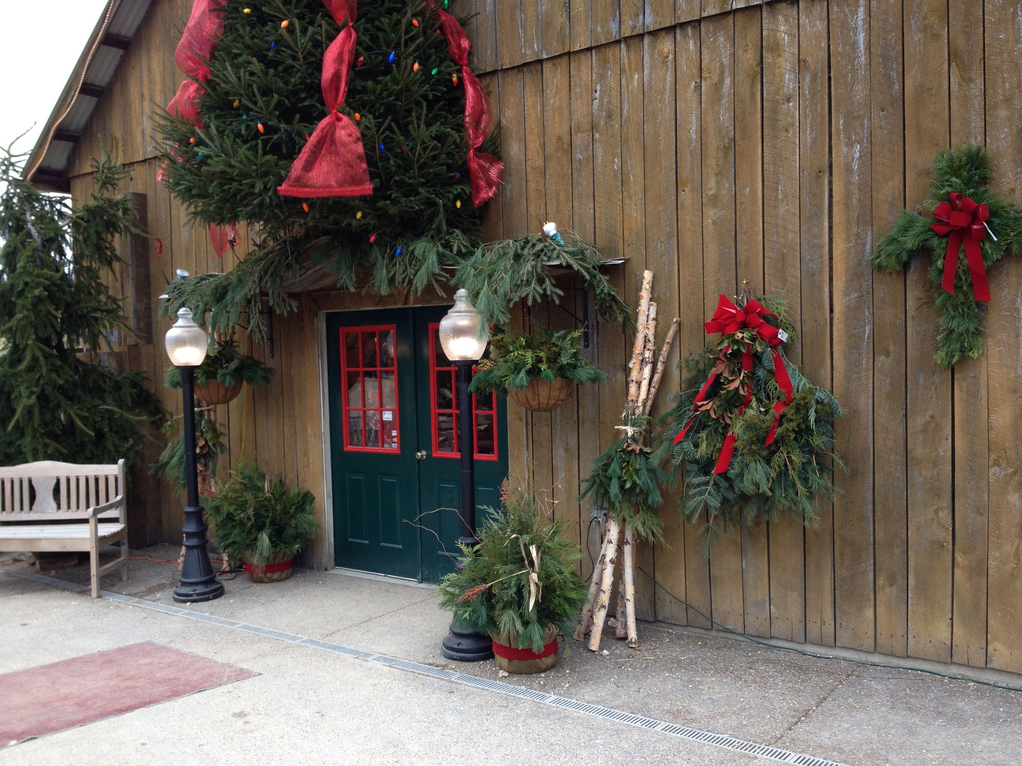 Pea Ridge Forest Christmas Tree Farm Near St. Louis