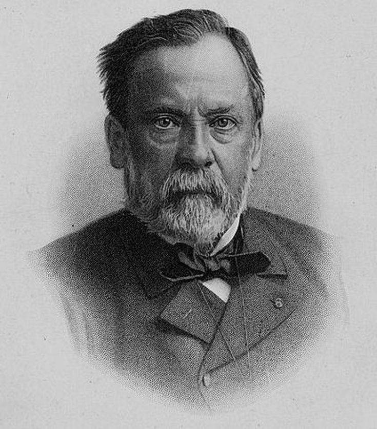 Populaire Louis Pasteur - Germ Theory of Disease SH48