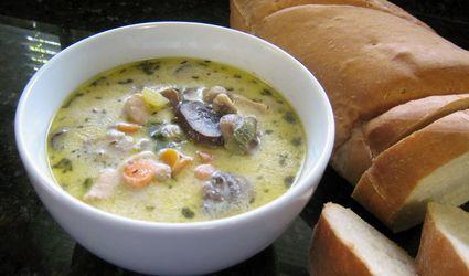 Can Cats Eat Mushroom Soup