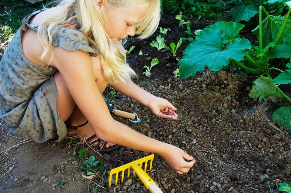 Girl planting seeds