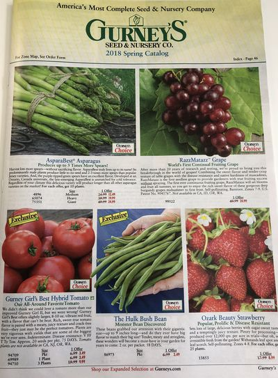Free Seed Catalog From Botanical Interests