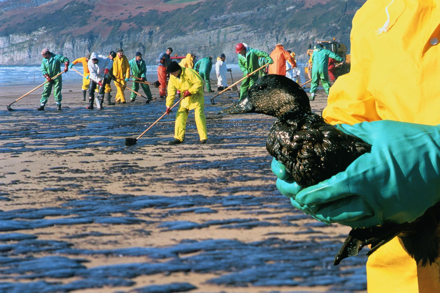 oil spills damage the environment