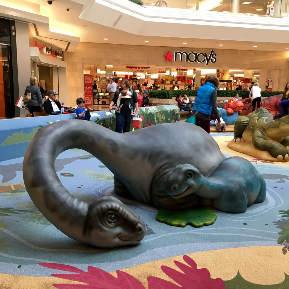 Top 10 Things To Do With Kids In Denver