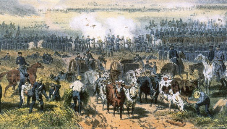 The Battle of Palo Alto