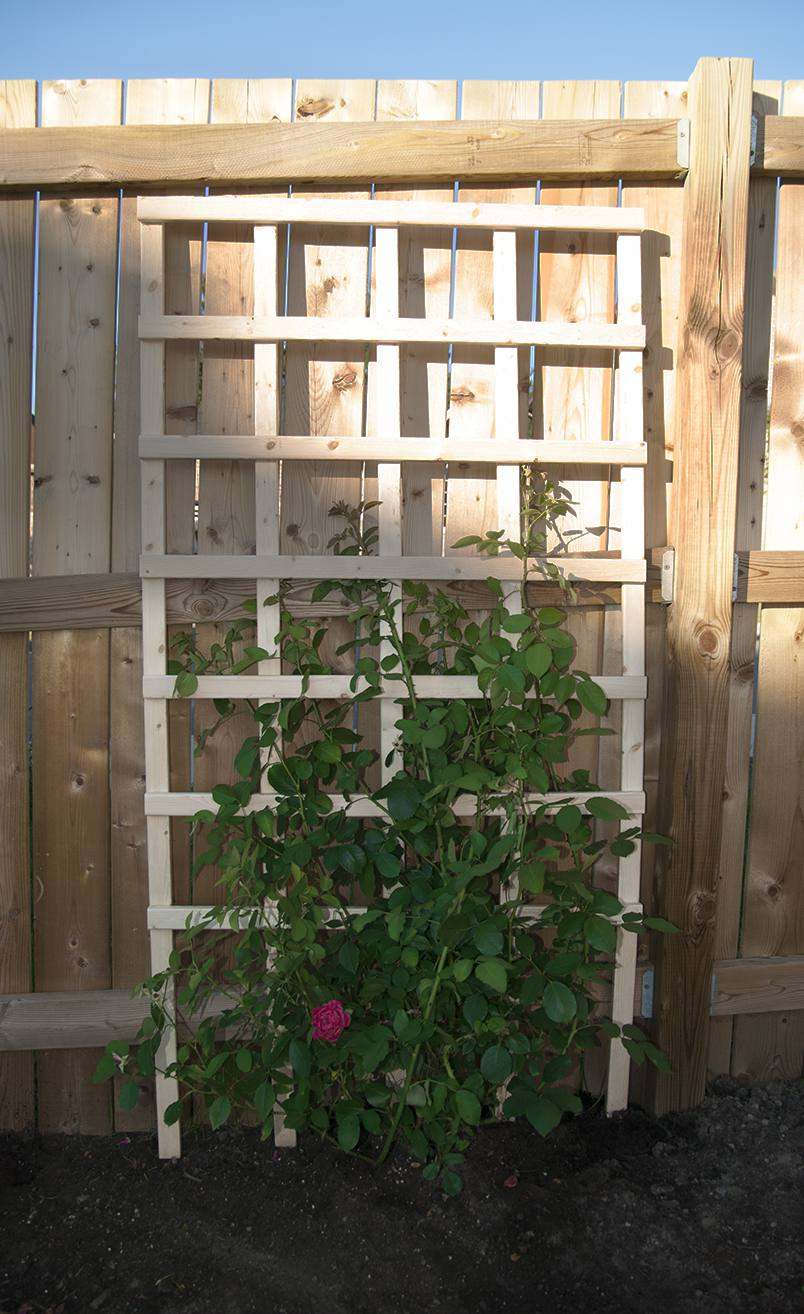 trestle tag box culvert new hampshire solutions garden