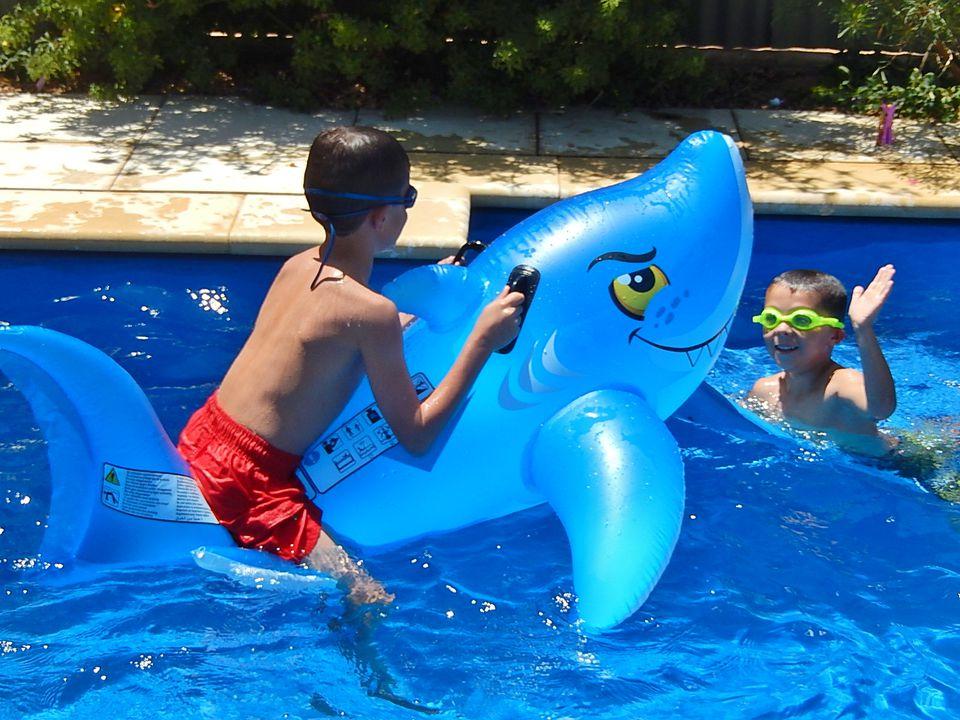 High Fiving a Shark