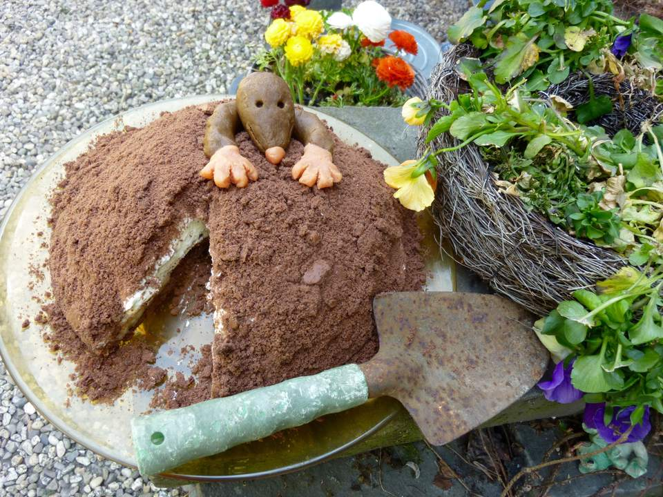 Chocolate Banana Mole Cake
