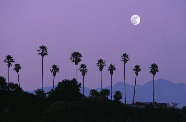 Paschal Full Moon