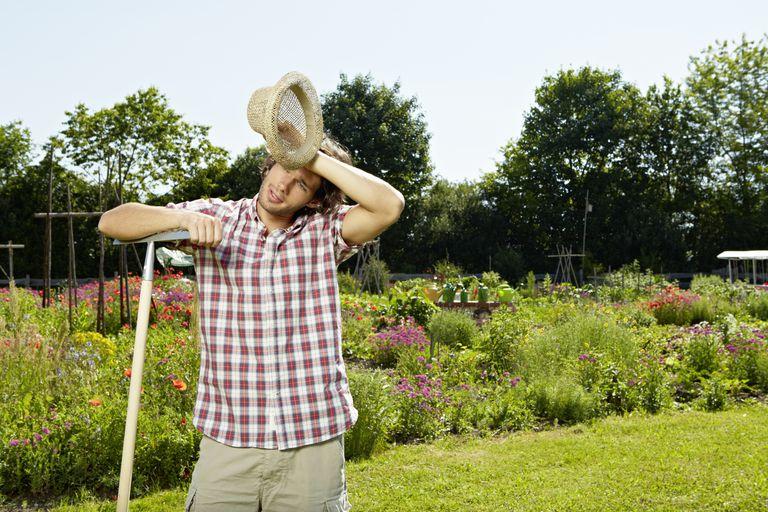 sweating in garden