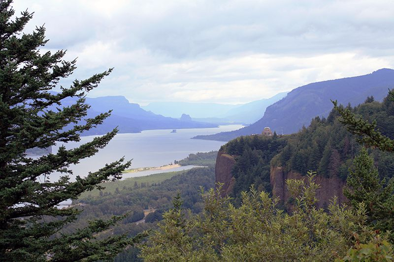 Columbia River Gorge View from Chanticleer Point (Angela M. Brown)