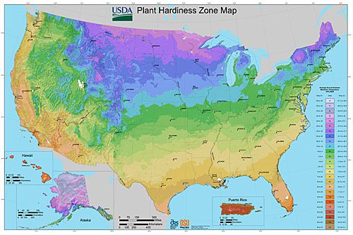 New USDA Plant Hardiness Zone Map for the United States