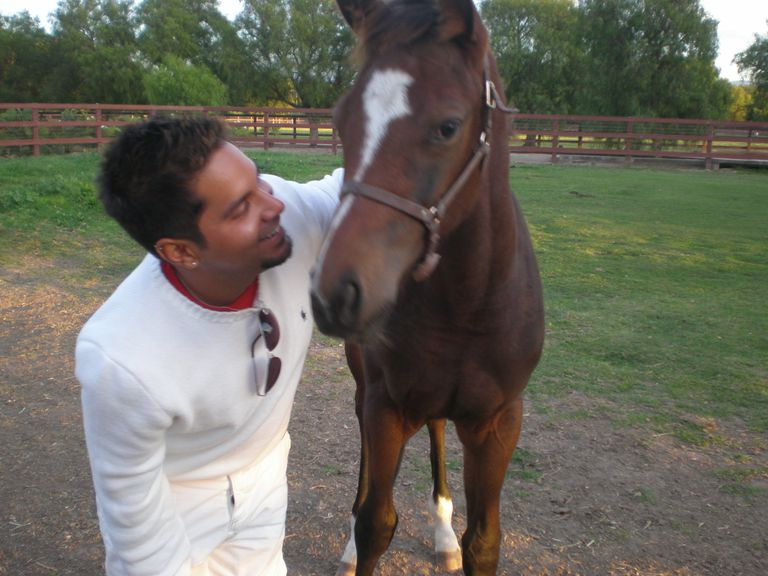 Christopher D. Cervantes, Los Angeles; Certified Horse Trainer