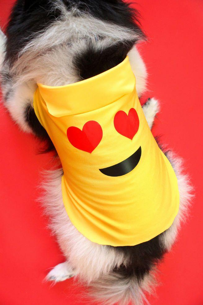 DIY Emoji Halloween Costume For Dogs
