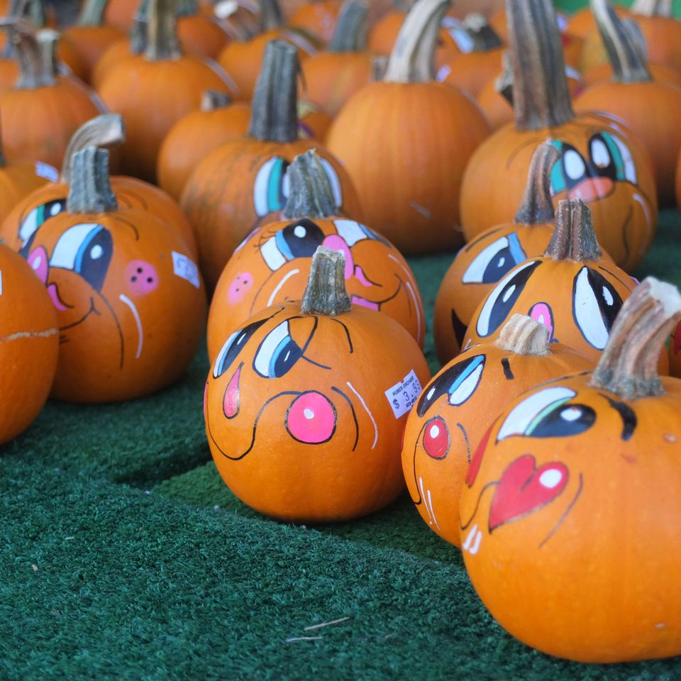 Painted pumpkins at Huber Farm.