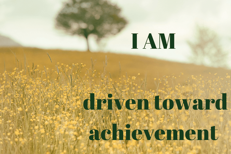 I got Goal Oriented. Affirmation Quiz