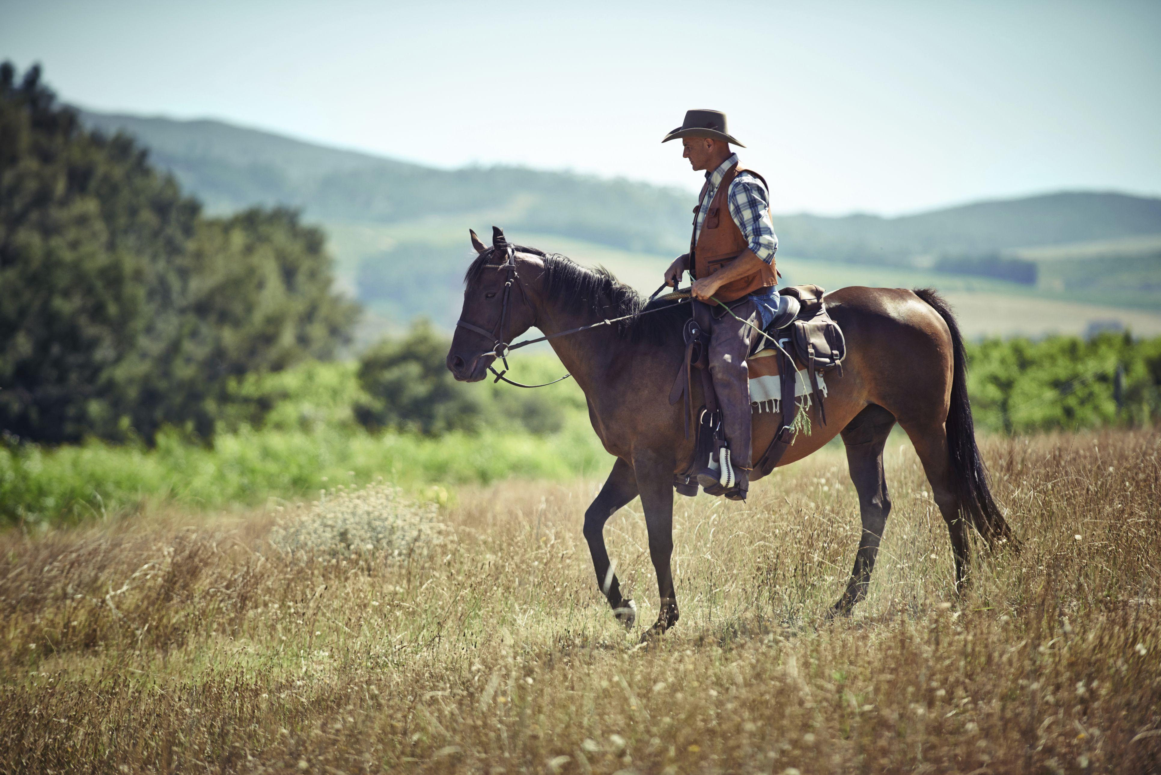 Choosing Safe Horseback Riding Boots