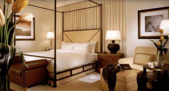 The 10 best san antonio hotels of 2018 for Cool dog spa san antonio