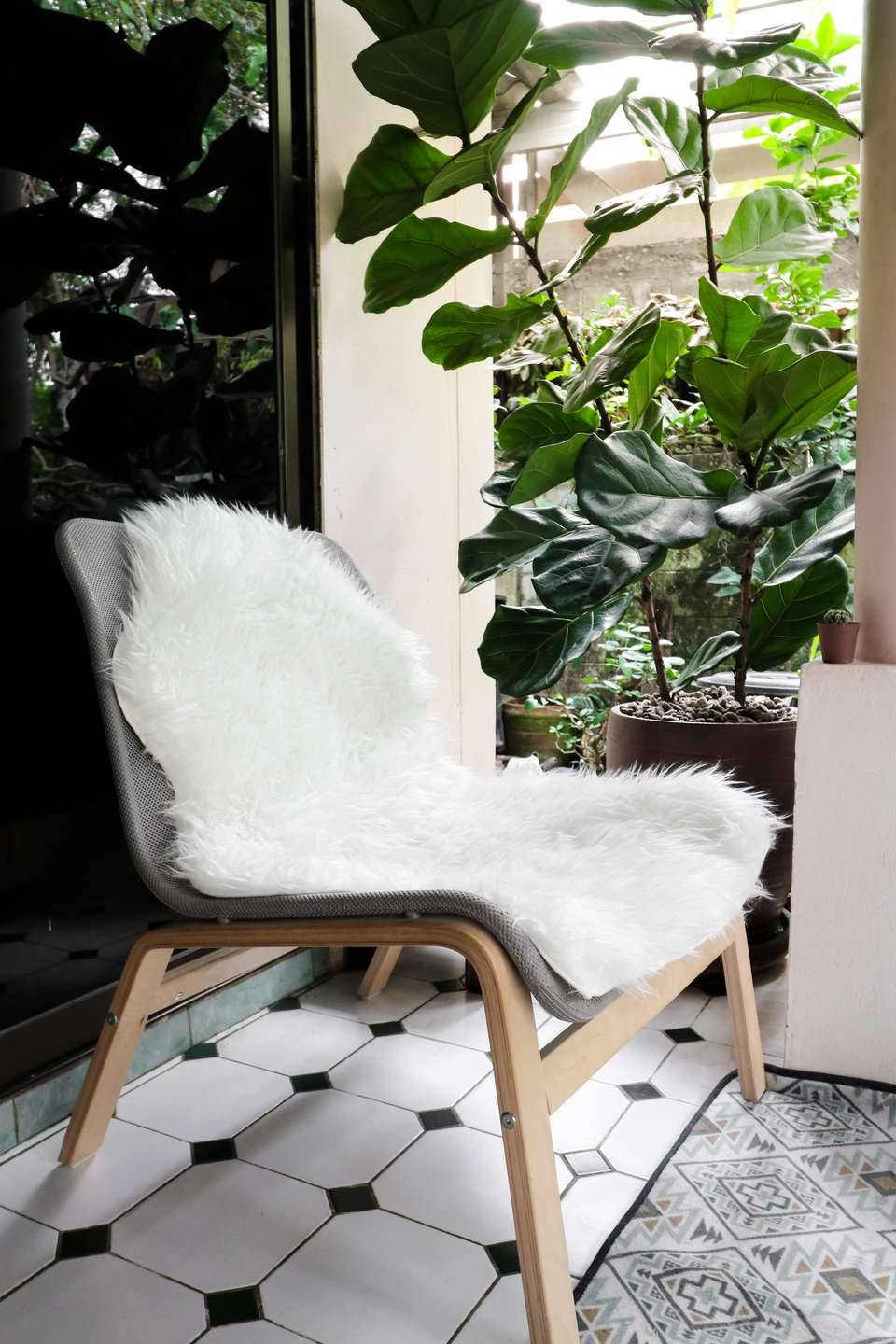 the 10 best houseplants for the bedroom