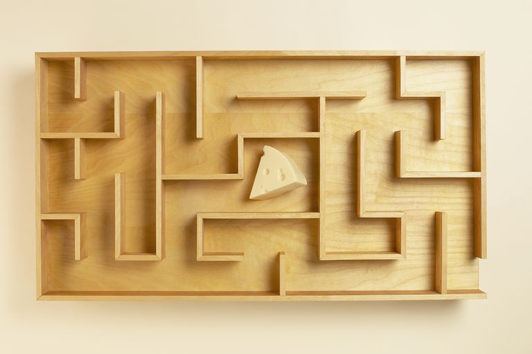 Cheese in Maze
